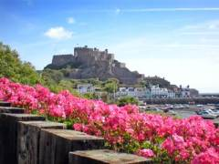 Castle_Flowers
