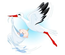 BabyandStork